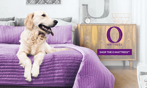 With Cyber Monday, customers can purchase the O Mattress easily.